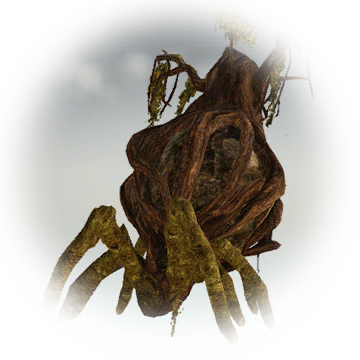 Tree Ghost Spider - Knowledge - Black Desert Database 2 0